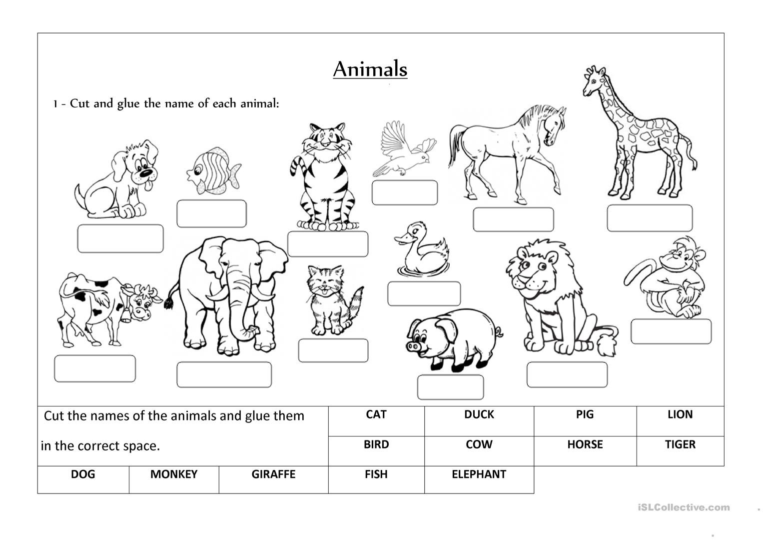Animal Classification Worksheet Pdf