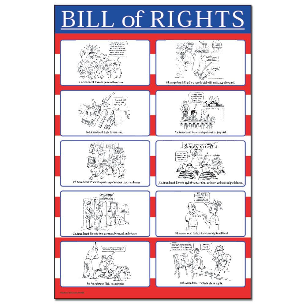Bill Of Rights Scenarios Worksheet