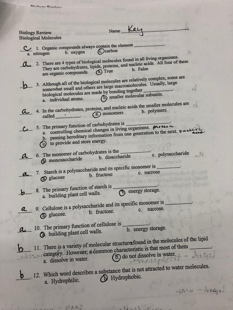 30 Biology Karyotype Worksheet Answers Key | Education ...