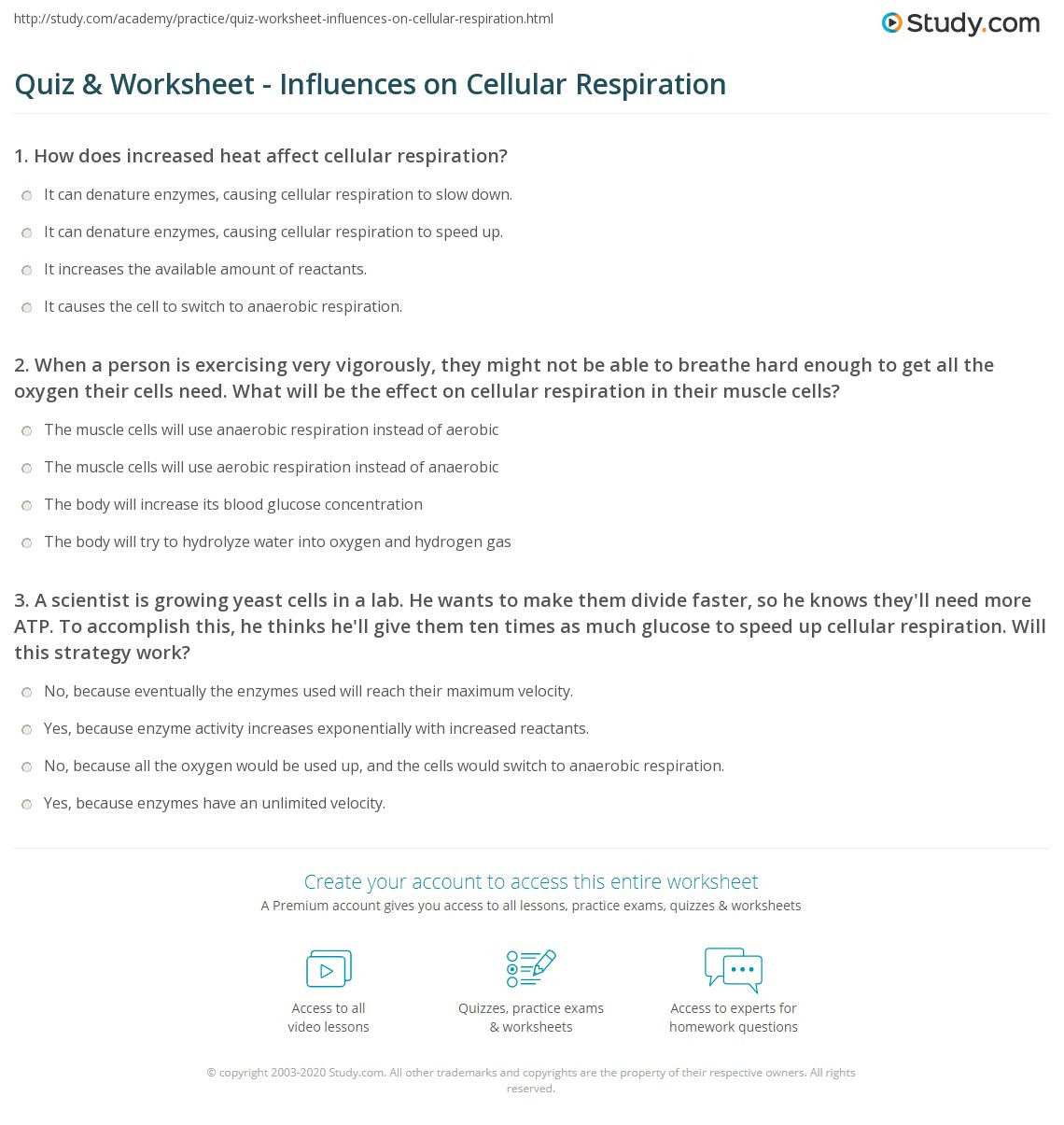 Cellular Respiration Review Worksheet