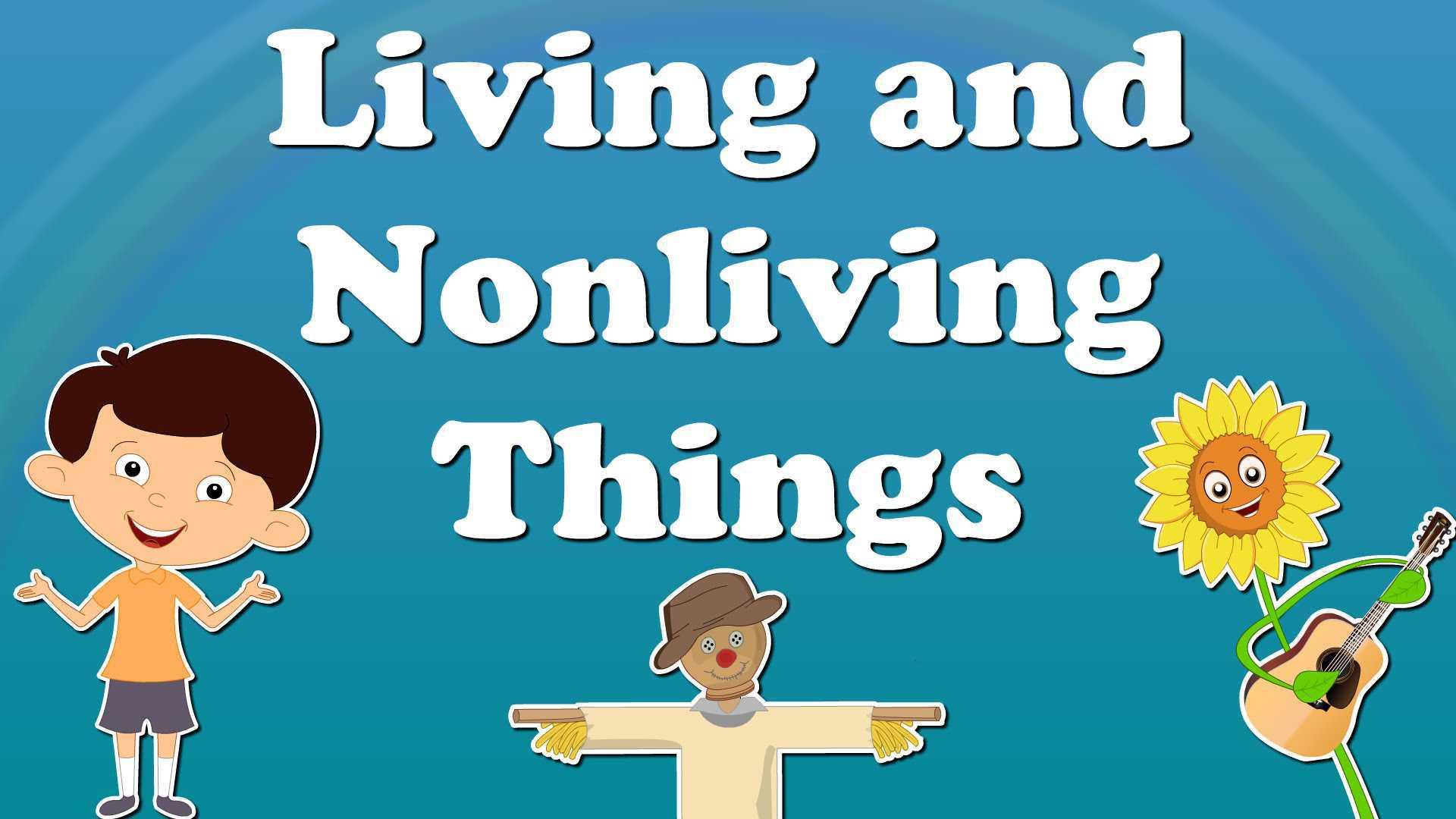 Characteristics Of Life Worksheet Answers