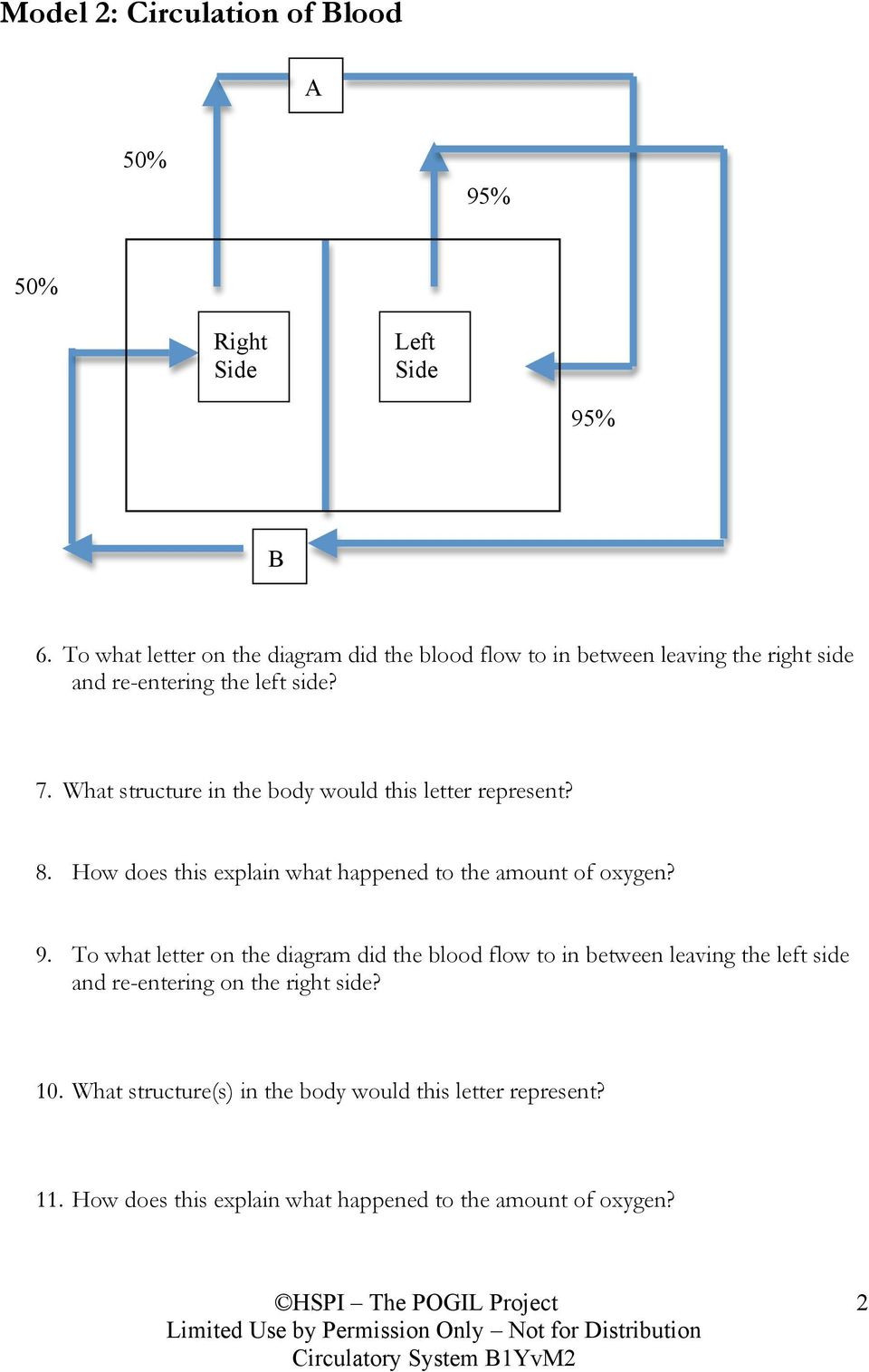 Circulatory System Worksheet Answers