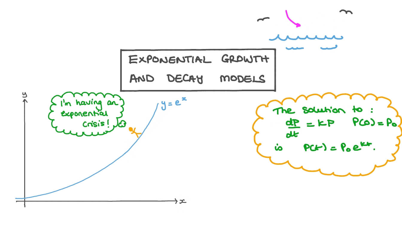 Exponential Growth and Decay Worksheet