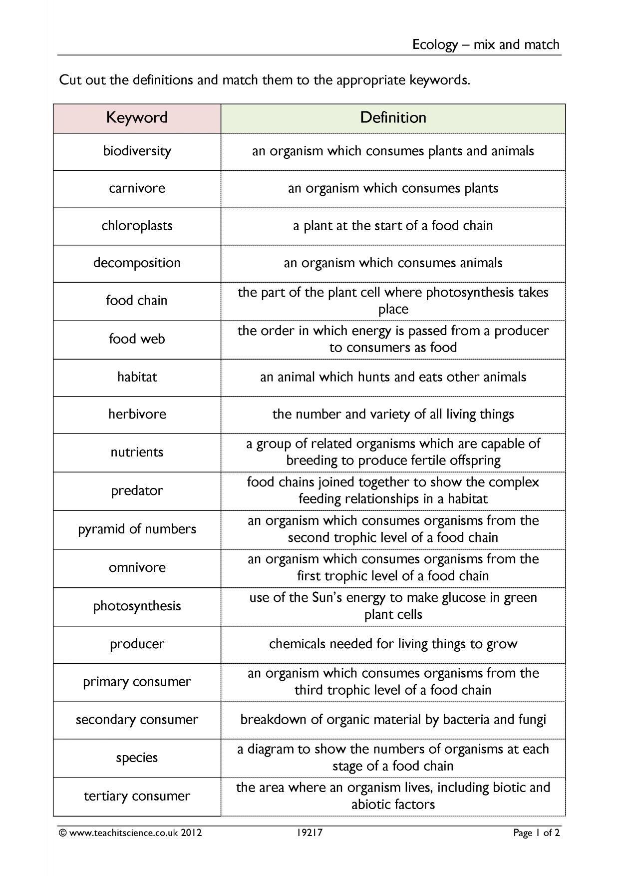 Food Web Worksheet Pdf