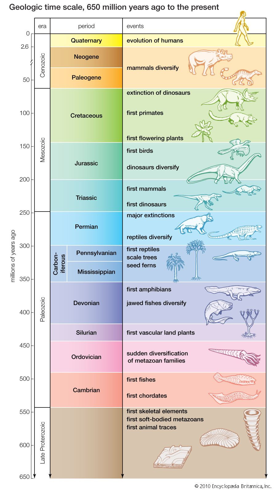 Geological Time Scale Worksheet