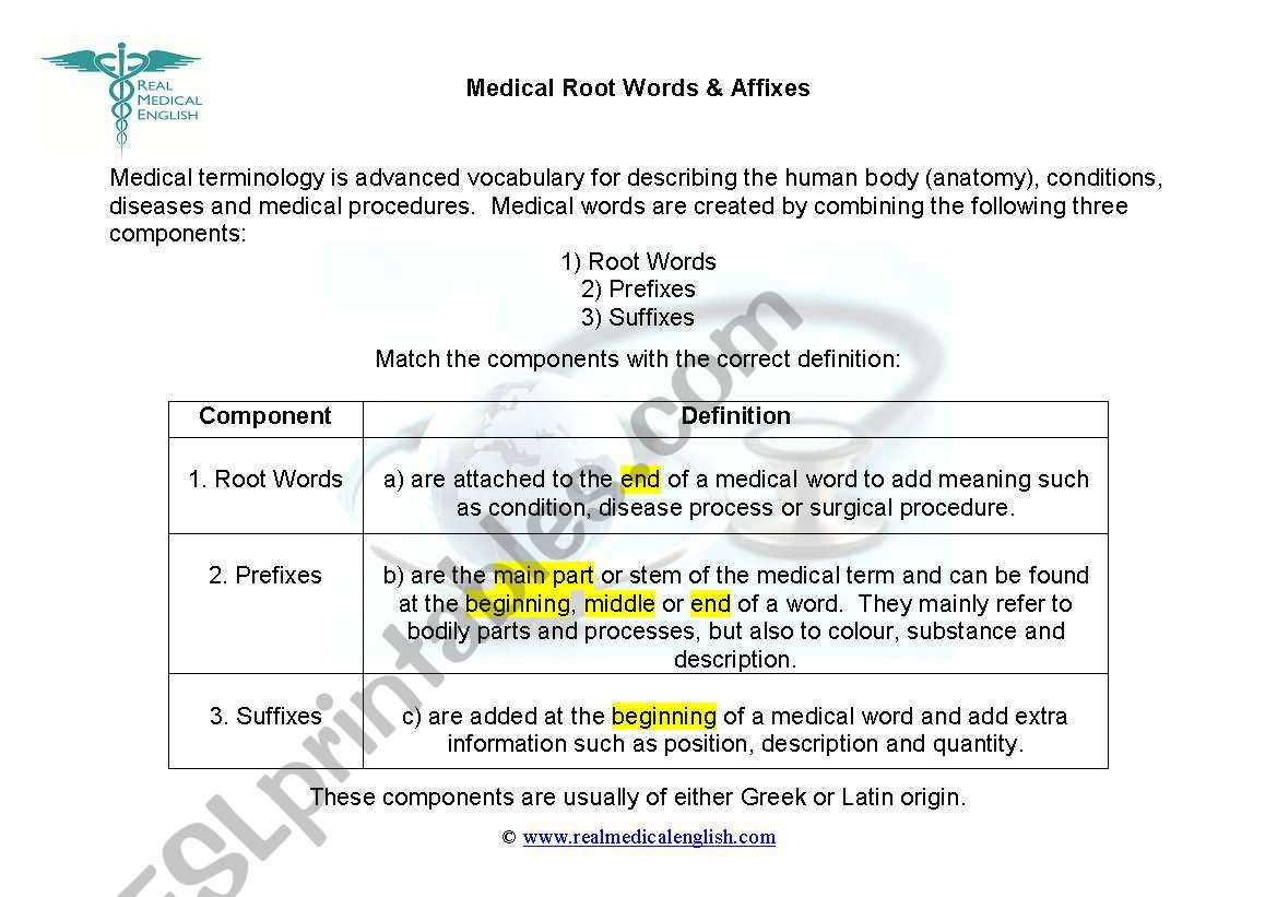 Medical Terminology Suffixes Worksheet