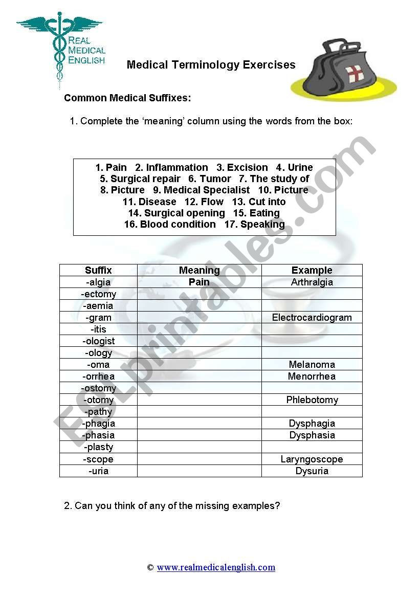 4 Medical Terminology Suffixes ESL worksheet by