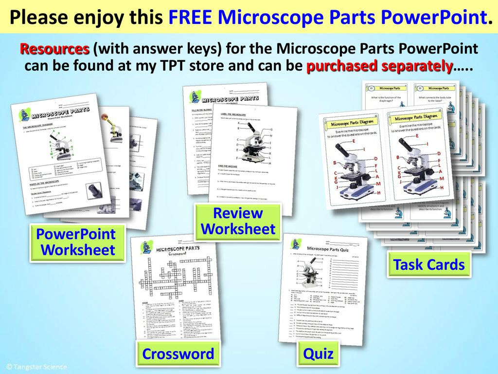 Microscope Parts and Use Worksheet