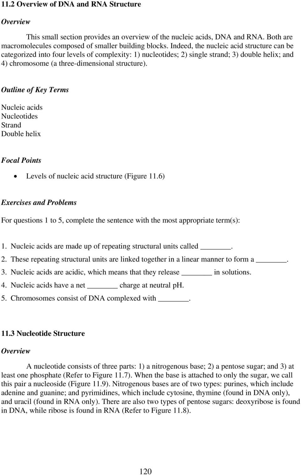 Nucleic Acid Worksheet Answers