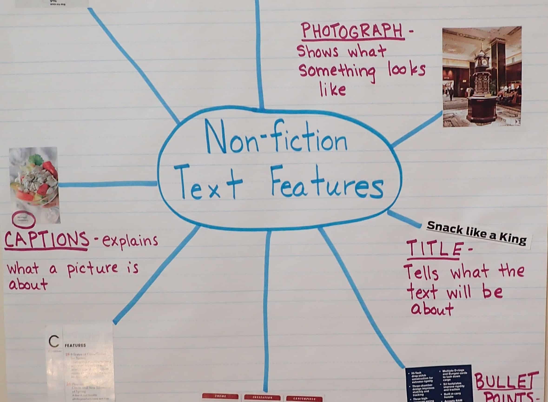 Text Features Worksheet 2nd Grade