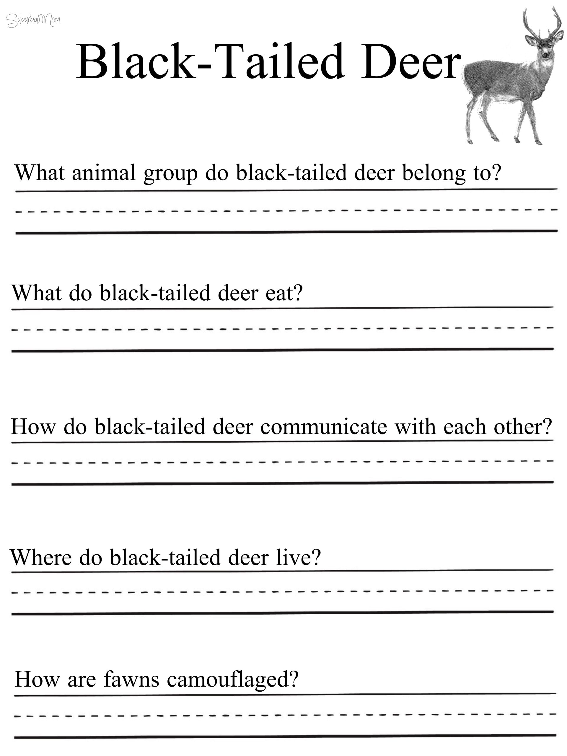 The Nature Of Science Worksheet