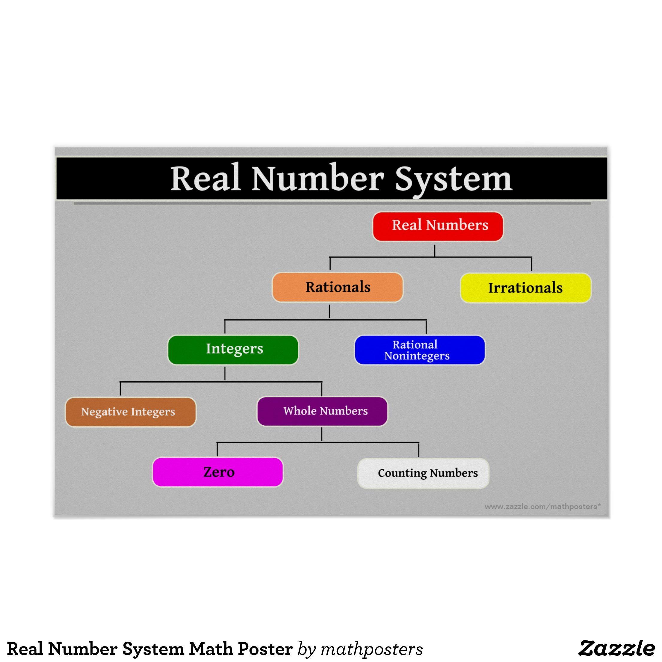 The Real Number System Worksheet