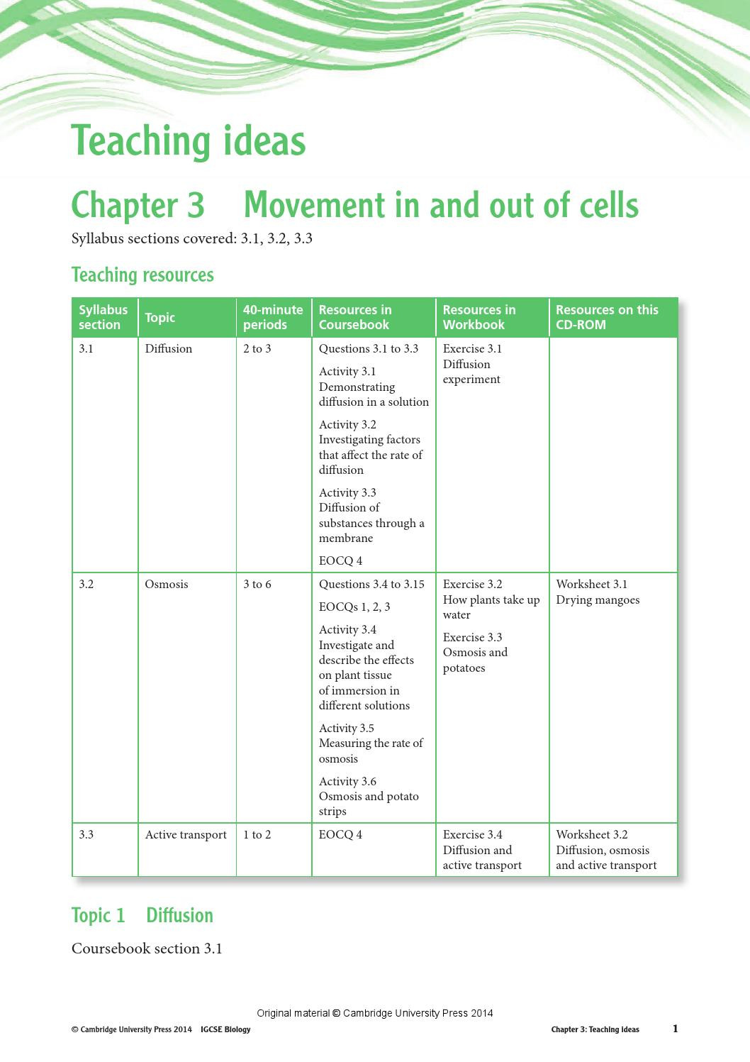 Transport In Cells Worksheet Answers