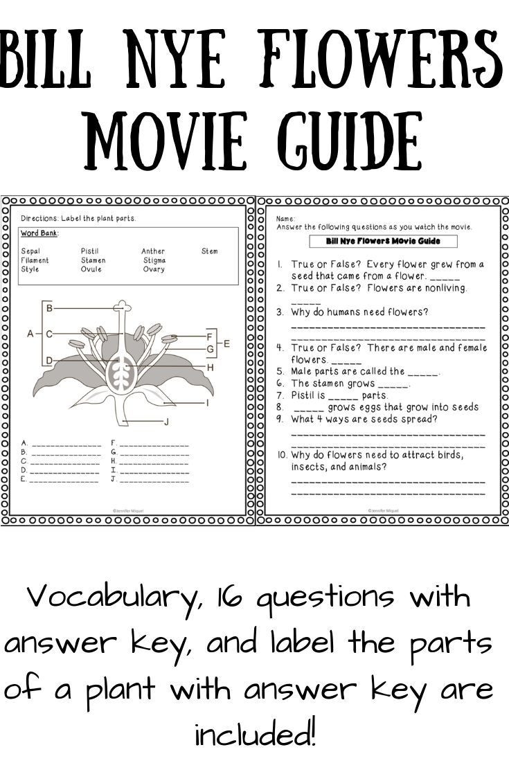 30 Bill Nye Magnetism Worksheet Answers | Education Template