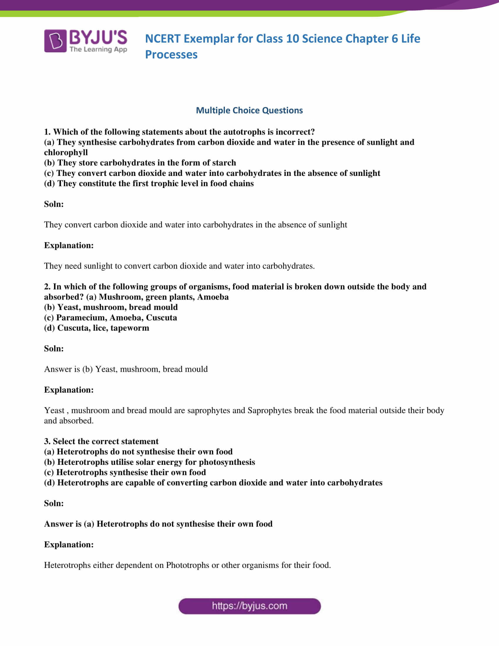 Chemistry Of Life Worksheet
