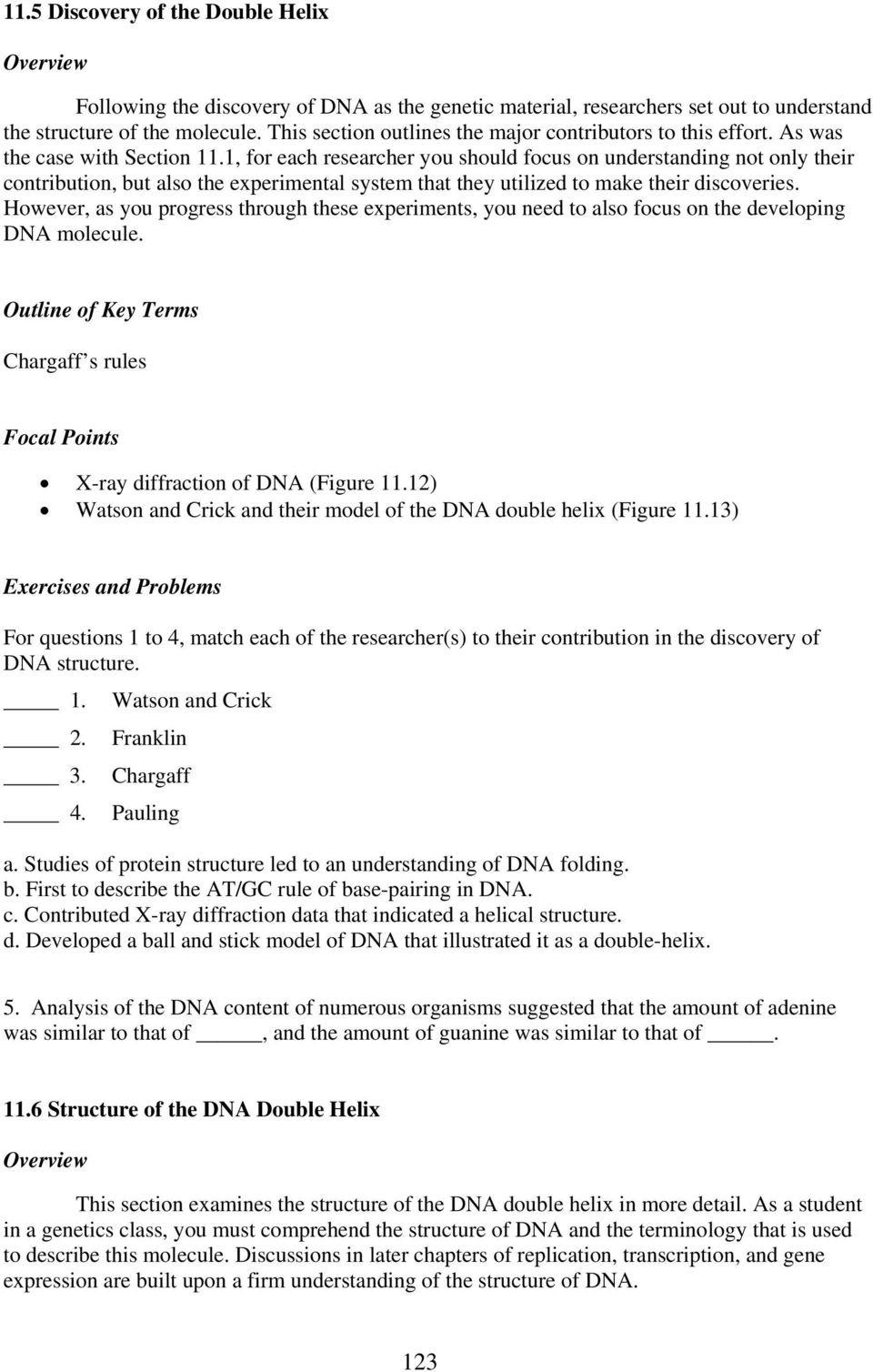 Dna Base Pairing Worksheet Answers