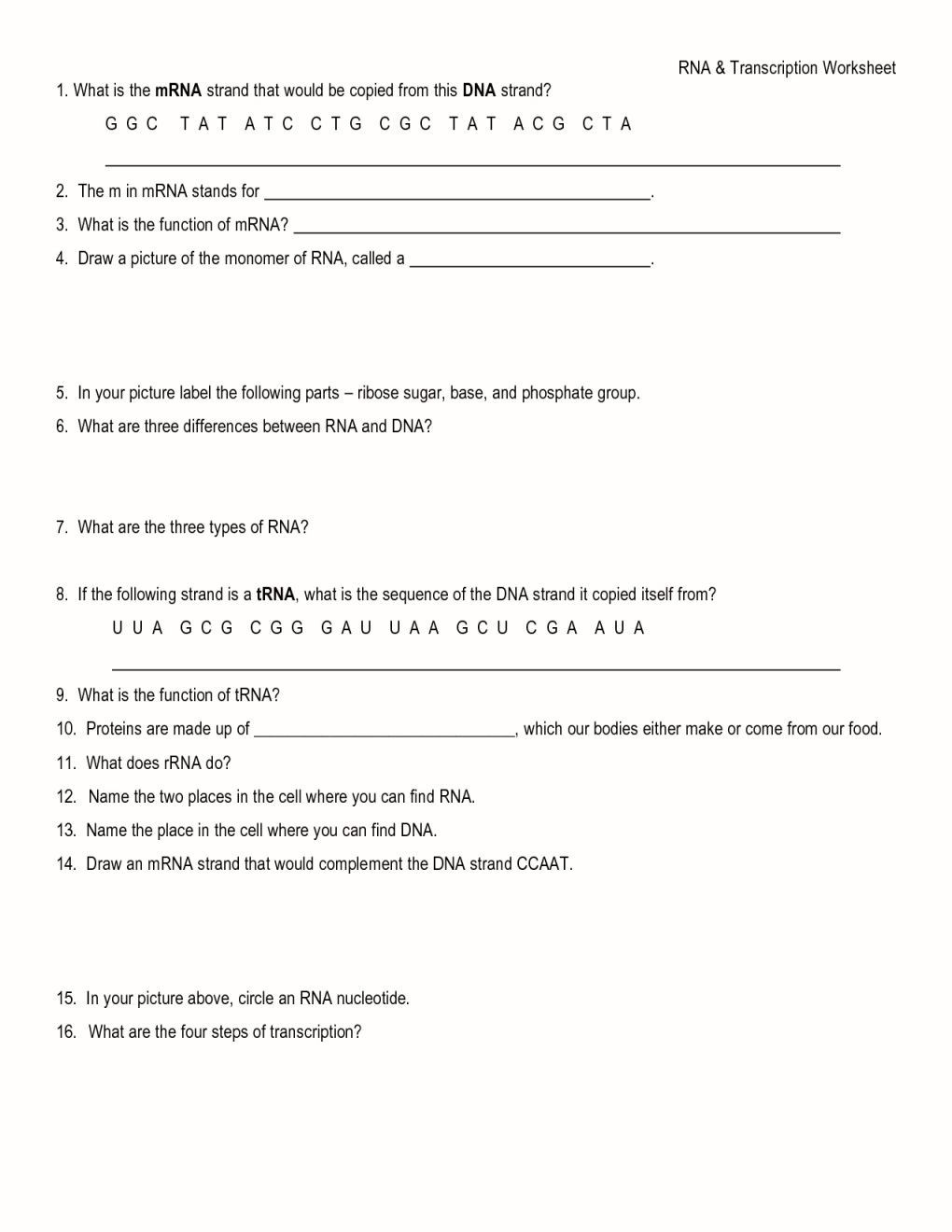 Momentum Worksheet Answer Key | Education Template