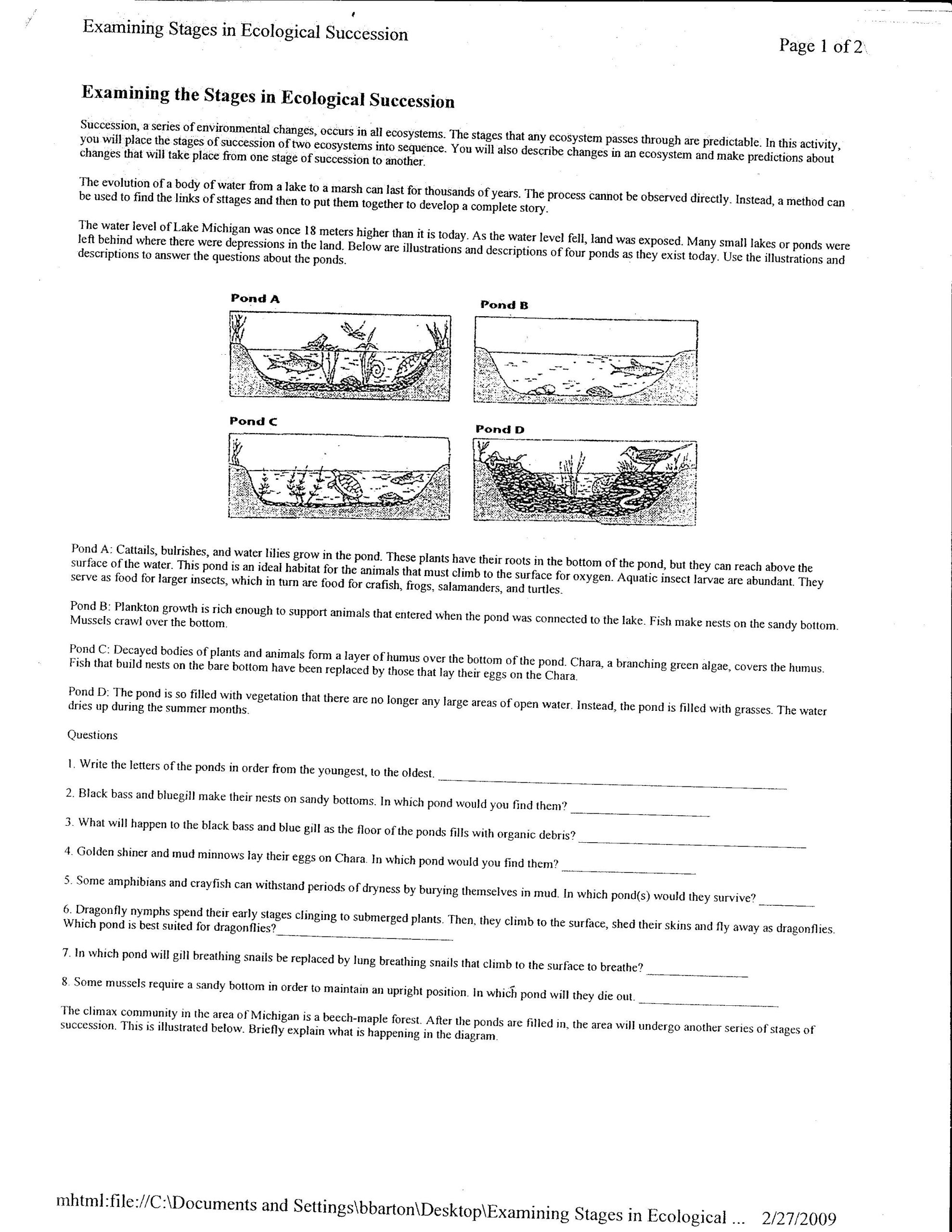 Ecological Succession Worksheet Answers