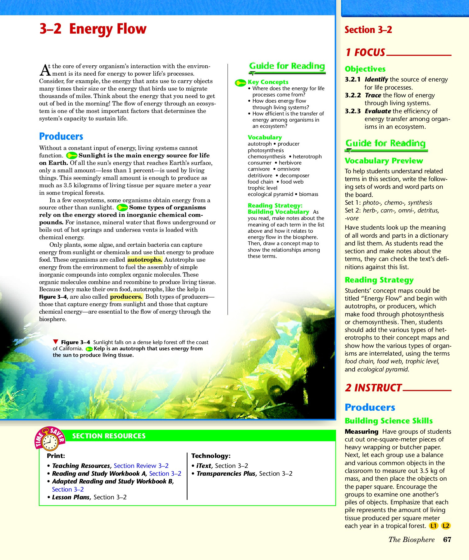 30 Energy Flow Worksheet Answers | Education Template