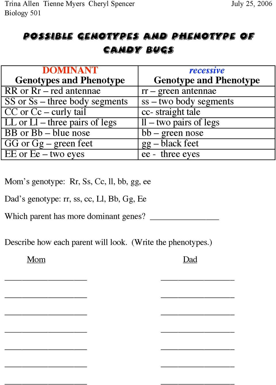 Genotypes and Phenotypes Worksheet Answers