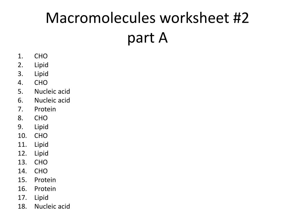 Macromolecules Worksheet 2 Answers Promotiontablecovers