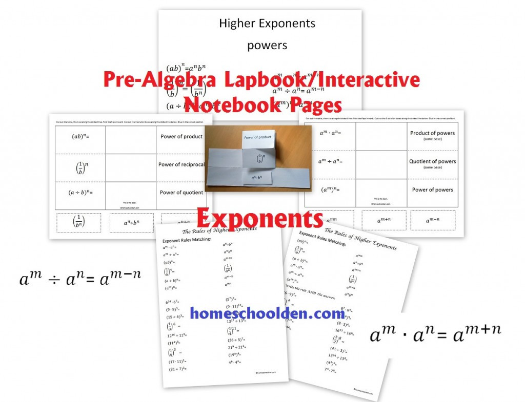 Pre Algebra Review Worksheet