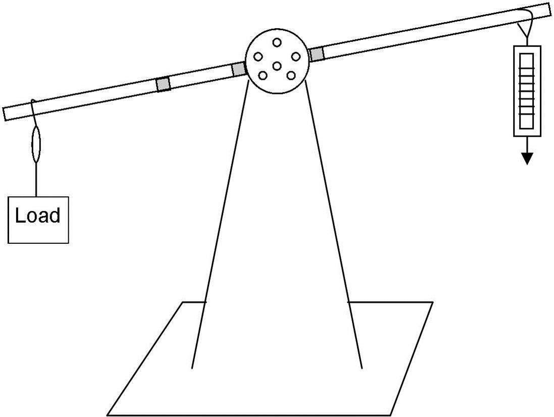Simple Machines Worksheet Pdf