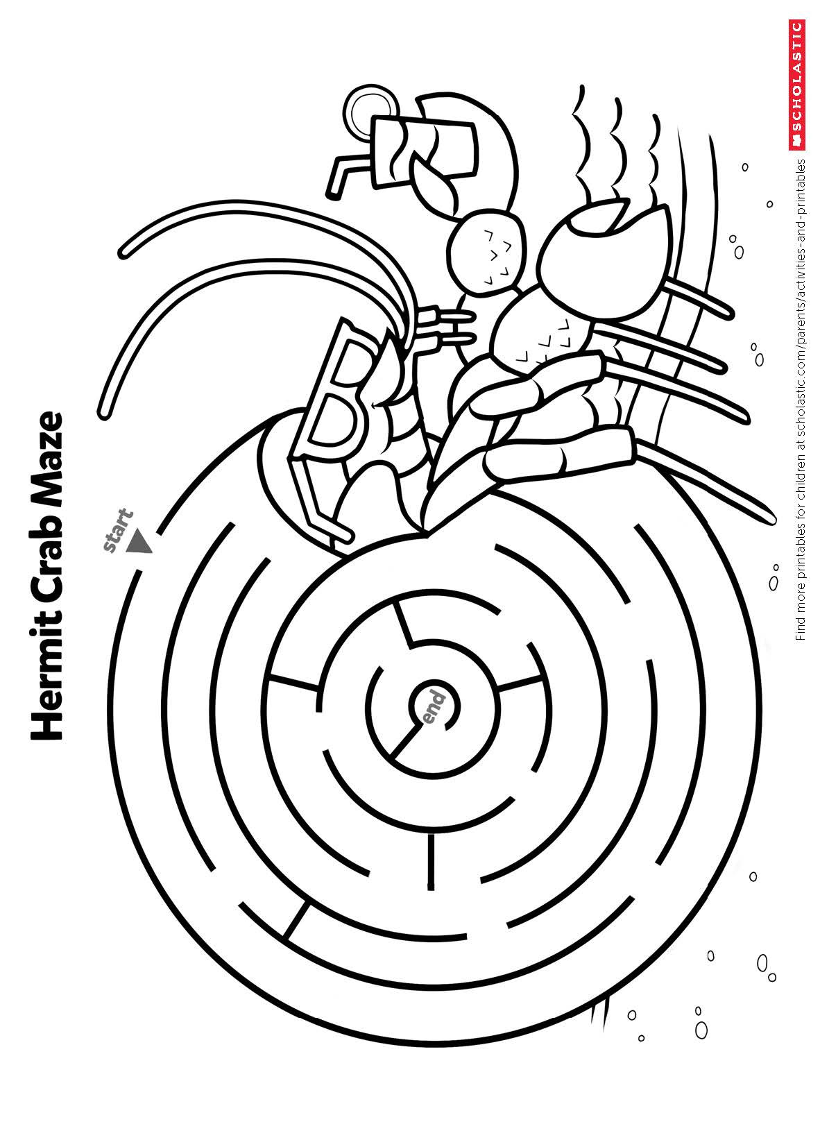 Sponges A Coloring Worksheet