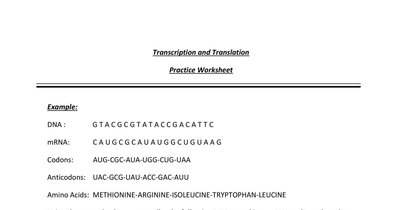 Transcription and Translation Practice Worksheet