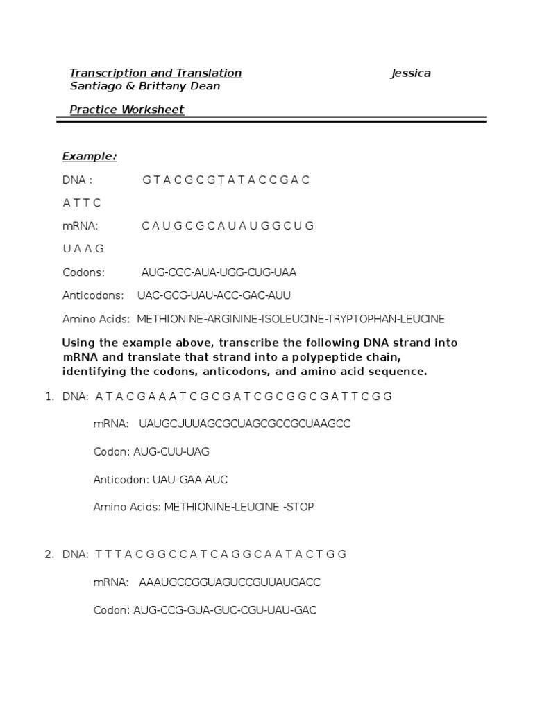 30 Transcription and Translation Practice Worksheet ...