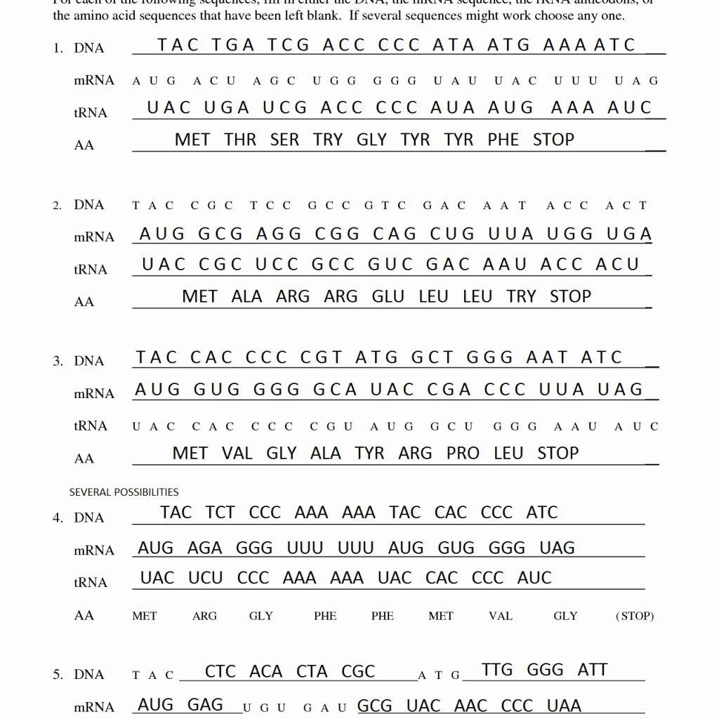 Translation and Transcription Worksheet