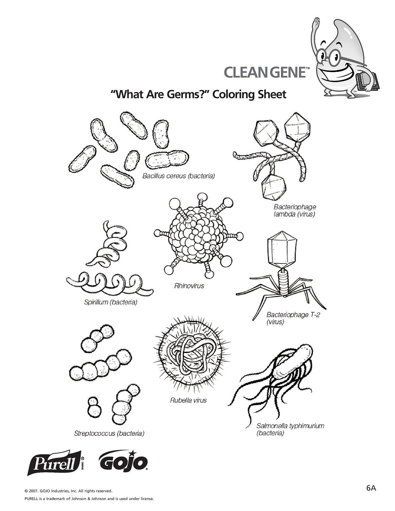 Virus and Bacteria Worksheet